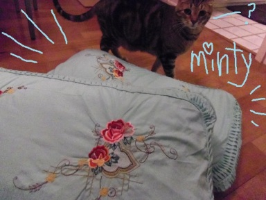 Atticus presents my new pillowcases. :P
