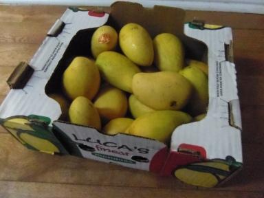 atualfo mangos