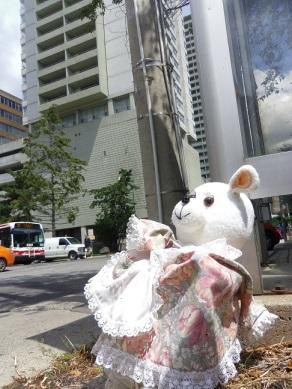 abandoned teddy bear in a dress