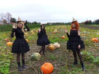 gloomth models pumpkin patch