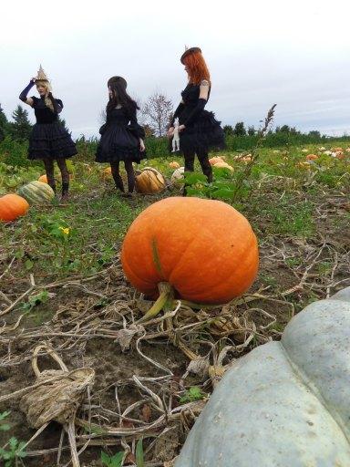 gloomth pumpkin photoshoot