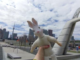 gloomth toronto bunny