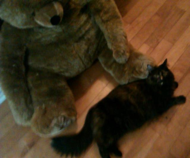 giant bear and goblin