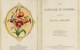 the language of flowers victorian