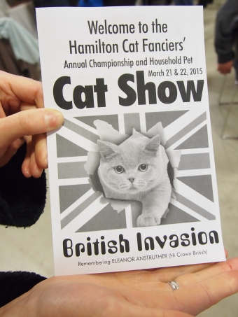 hamilton cat fanciers cat show british invasion