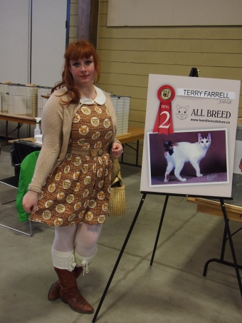 hamilton cat fanciers cat show 2015 cat dress brown catdress print