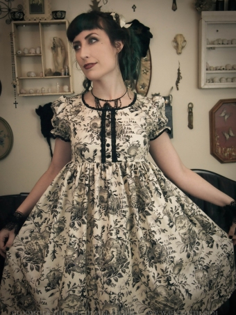 gloomth bird themed lolita dress