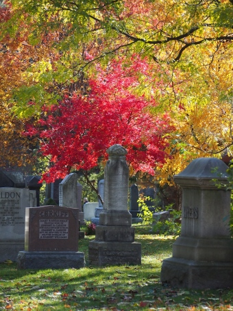mount pleasant cemetery autumn toronto
