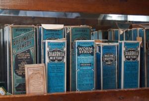 antique skulls and taxidermy aberfoyle antique market