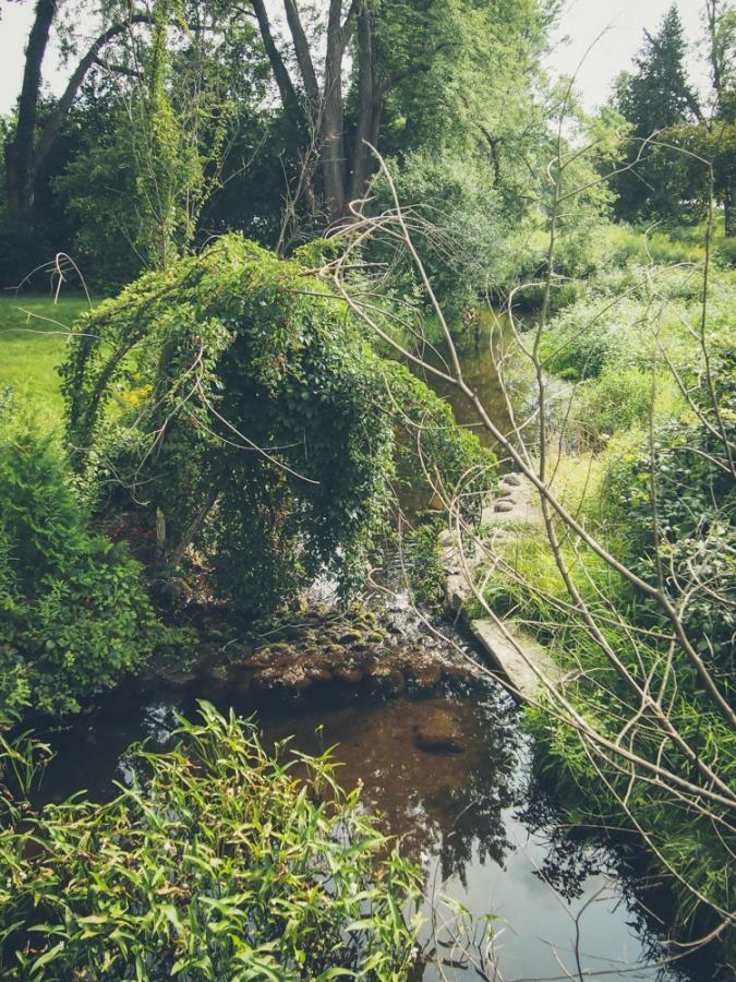 guelph yorklands green hub natural