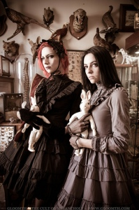 gothic victorian fashion gloomth taxidermy cabinet of curiosities