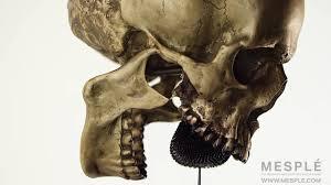 eric mesple skull hourglass