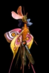 Cedric Laquieze fairy sculpture insect (2)